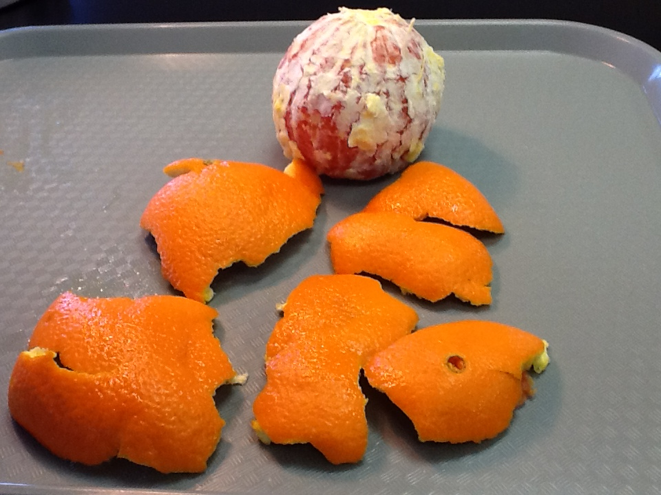 orange and peel arranged on tray