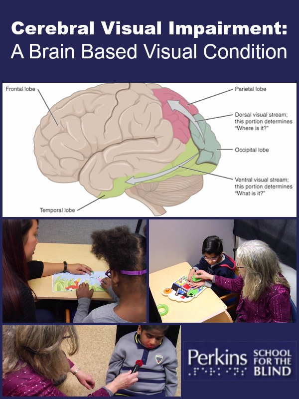 Dr. Lueck provides an overview of cerebral visual impairment and the challenges that parents and professionals face.
