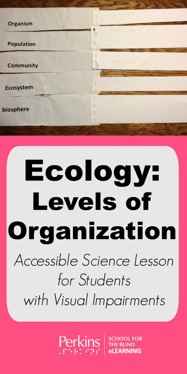 Collage of ecology levels of organization