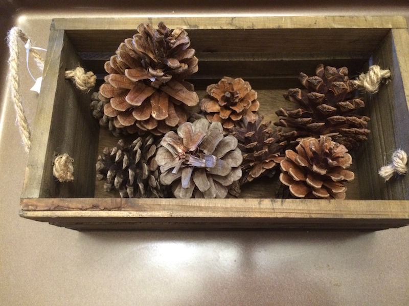 box of pinecones