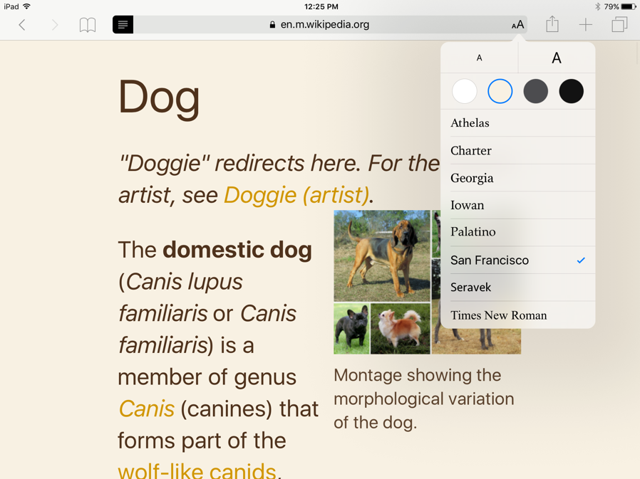 Screenshot of Reader with Sepia colors (off white background and dark brown font).