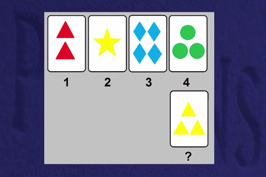 An example of a typical sorting exercise accessible to most students without a visual impairment.