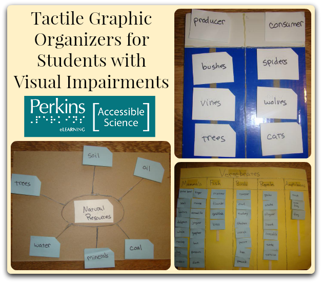 tactile graphic organizers collage