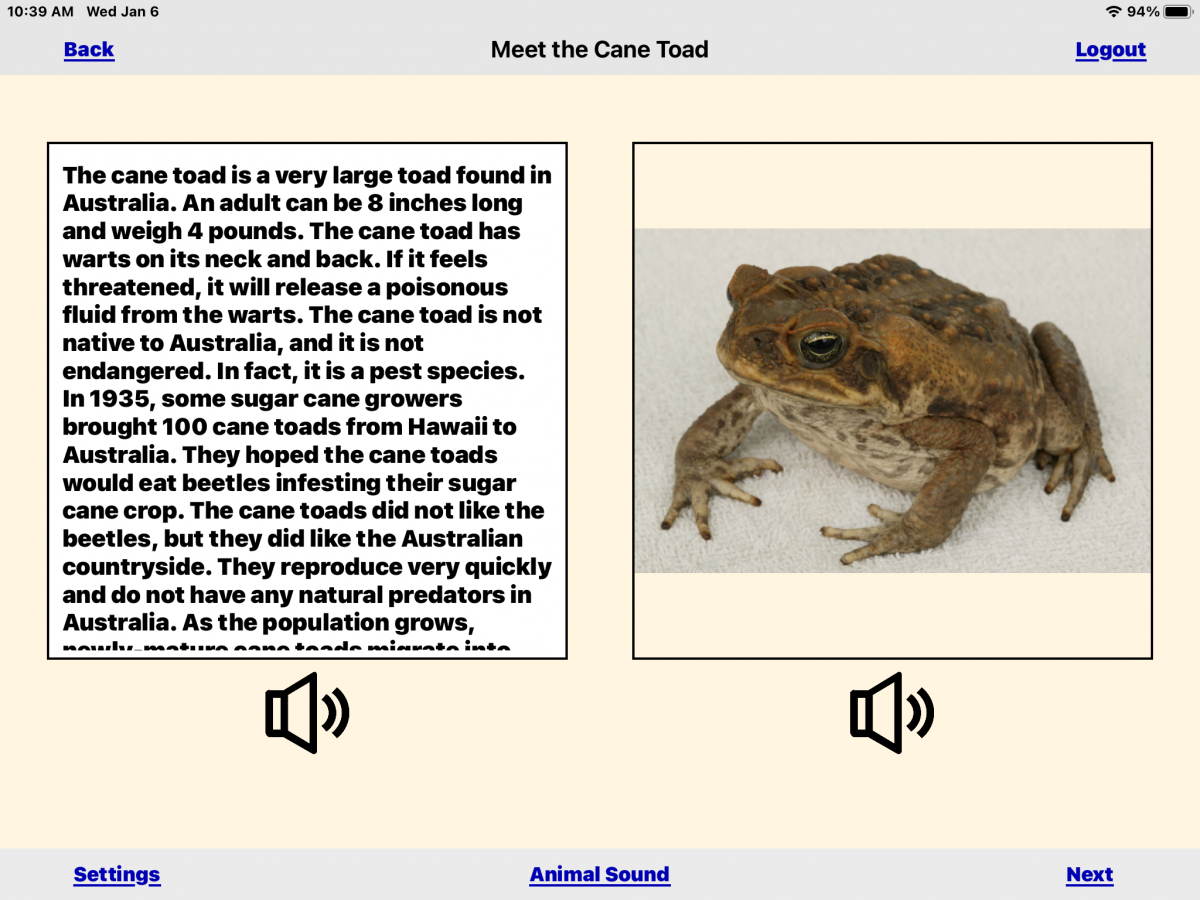 Screenshot of the Cane Toad story and image of a brown toad with speckled stomach.
