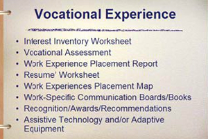 The Vocational Experience Component.