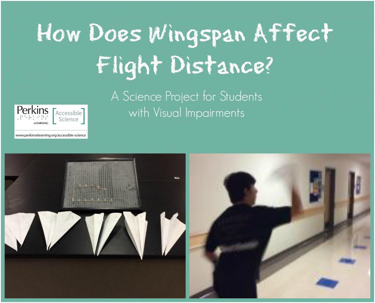 How Does Wingspan Affect Flight Distance? | Perkins eLearning