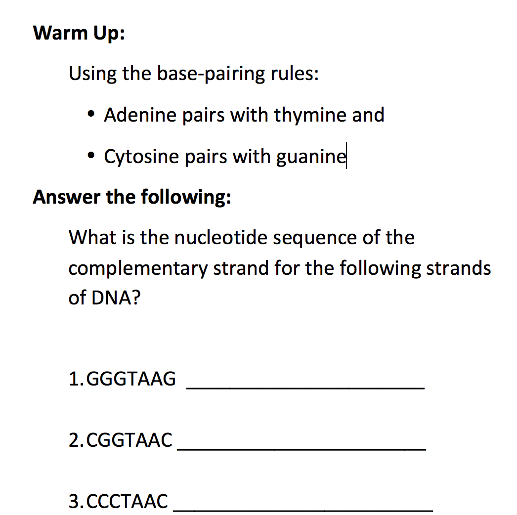 Reading the DNA Code Using the APH DNA Twist Model – Dna Model Worksheet