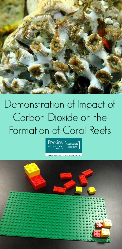 Demonstration of impact of carbon dioxide on coral reefs