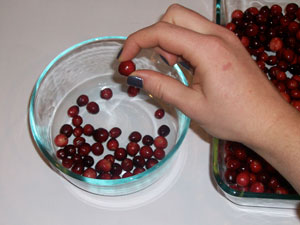 transfer cranberries to a bowl