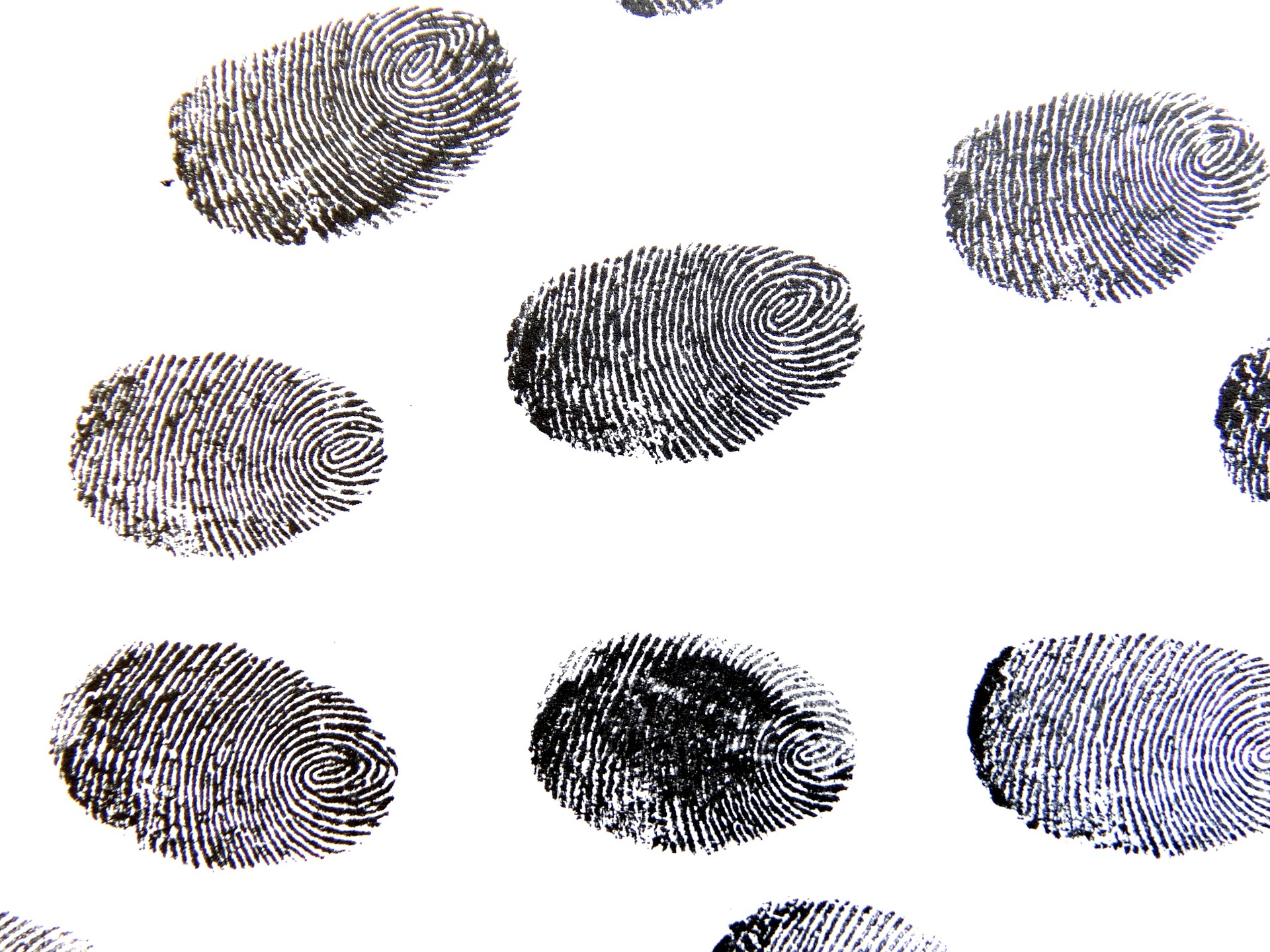 Which Fingerprint Is Most Common Perkins Elearning