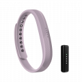 Picture of the basic Flex 2 fitbit band and tracker unit