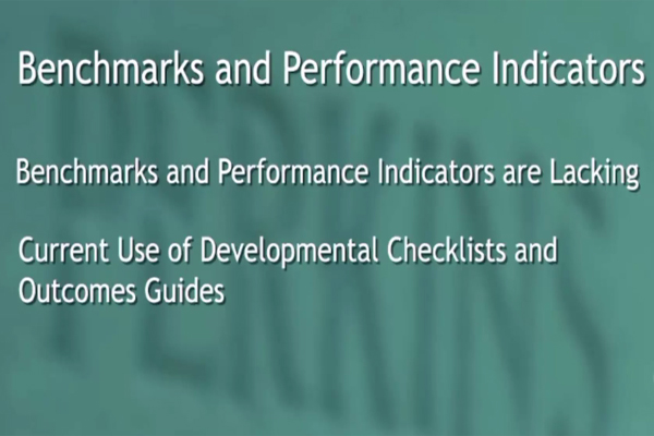 The benchmarks and performance indicators in the assessment practices.