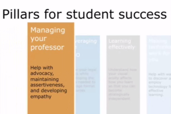 An orange rectangular column depicts the first pillar, Managing your professor.