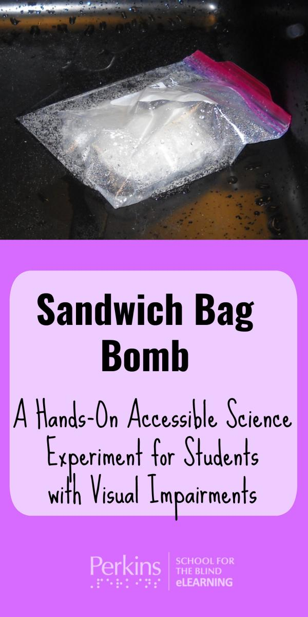 Collage of Sandwich Bag Bomb