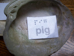 pig spelled out in braille under a seashell