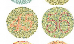 Ishihara color blindness test (combinations of various colored dots which create hidden numbers)