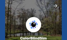 """Screenshot of ColorBlindSim website with logo and text, """"ColorBlindSim"""""""
