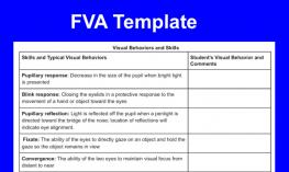 Image of a portion of the FVS template showing visual behaviors and skills.