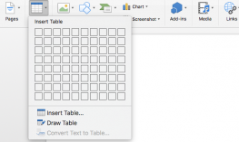 Screenshot of the Insert Table window in Microsoft Word.
