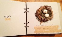 Photo of an accessible birdbook that Sandra made for her son.
