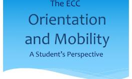 The ECC Orientation and Mobility: A Student's Perspective