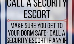 Ten reasons you should call a security escort. www.veroniiiica.com