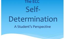 "Graphic: ""The ECC Self-Determination, a Student's Perspective"""