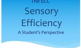 The ECC Sensory Efficiency: A Student's Perspective