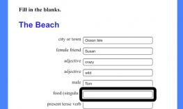 Screenshot of Wacky Web Tales, the Beach web form with static text and text fields.