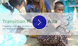 Image of the transitionplanningasia.com website.