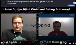 """Screenshot of live video interview, """"How to Do the Blind Code and Debug Software"""""""