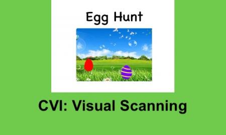 """Photo of Egg Hunt book cover (two bright Easter eggs with background of green field and blue sky and text,""""CVI: Visual Scanning"""""""