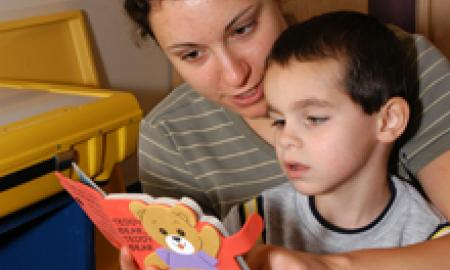 Early Childhood Education Service Delivery.