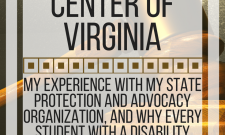 All about the Disability Law Center of Virginia: My experience with state protection & advocacy. www.veroniiiica.org