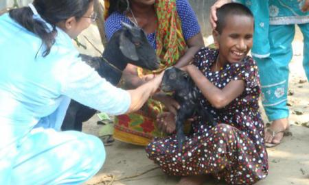 Image of person petting a goat.