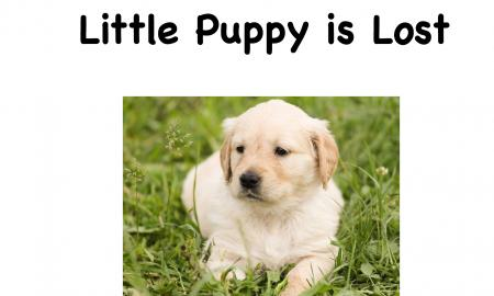 """Cover page of the book """"Little Puppy is Lost"""" is with a golden retriever puppy laying in the grass."""