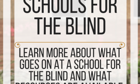 Seven Myths about schools for the blind. www.veroniiiica.com