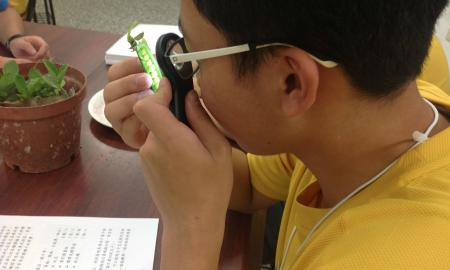 looking at the seed pod with a lighted magnifier