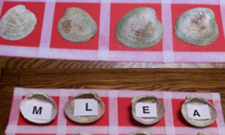 letters under seashells in a matching game