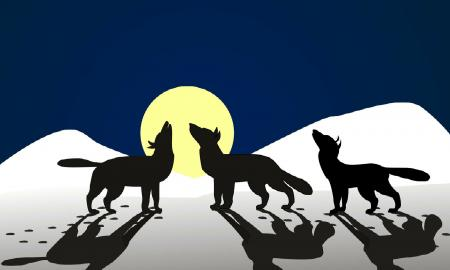 three wolves howling at the moon