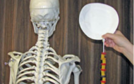 "skeleton next to paper plate ""head"" and macaroni tied on with shoe string"