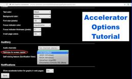 "Screenshot of Accelerator's options with 'Options for Screen reader' circled and text, ""Accelerator Options Tutorial"""