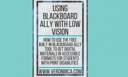 "graphic with ""Using Blackboard Ally with Low vision. www.veroniiiica.com"""
