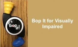 "Photo of Bot It Mini with text, ""Bot It for Visually Impaired"""