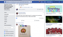 Screenshot of Facebook thread of a Community page for TVIs with a photo of a tactile bulletin board idea that is not described..