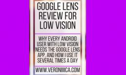 Google Lens Review for Low Vision. www.veroniiiica.com