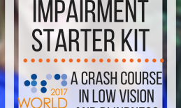 Make Vision Count: Vision Impairment Starter Kit: A crash course in low vision and blindness resources. www.veroniiiica.com