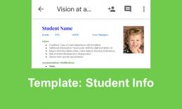 Vision at a Glance template: Google Doc with cute curly-head boy on a template with student data, vision, & modifications