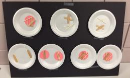 Student-built model of mitosis