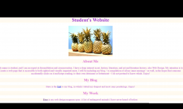 This is an an example of a website created by a blind student.